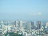 Tokyoairplane