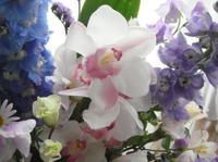 Flowers_2_2